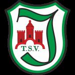 Logo TSV Immenhausen